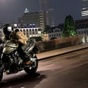Bandit 1250 2012 (7)