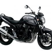 Bandit 1250 2012 (9)
