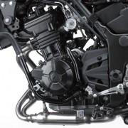 Kawasaki Ninja 250R 2013 (1)