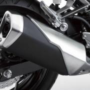Kawasaki Ninja 250R 2013 (22)