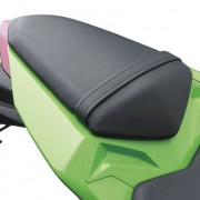 Kawasaki Ninja 250R 2013 (24)