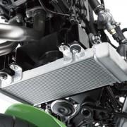 Kawasaki Ninja 250R 2013 (3)