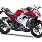 Kawasaki Ninja 250R 2013 (14)