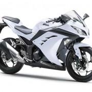 Kawasaki Ninja 250R 2013 (35)